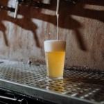 En øl med skum står under en tappekran