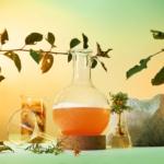 Et vakkert dekorativt bilde med et laboratie-glass fylt med oransje væske, omkranset av blader, stein og andre laboratieglass.
